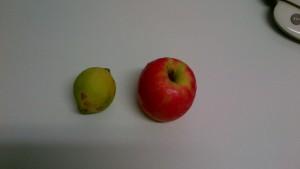 Ingredientes 3. Manzana y zumo de limón. Fuente de pectina, espesante natural. El limón es de nuestro huerto.